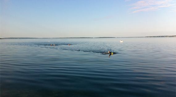 nadar en aguas abiertas